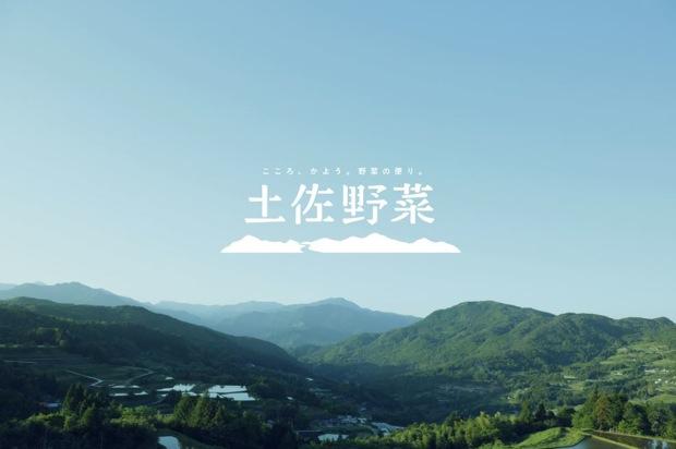 野菜も段ボールもmade in 高知!高知産限定の野菜通販サイト〈土佐野菜〉|コロカルニュース