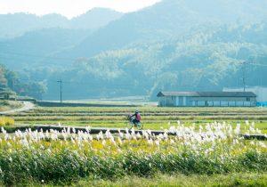 日々の風景が写真展に。小豆島での暮らしを撮り続けること